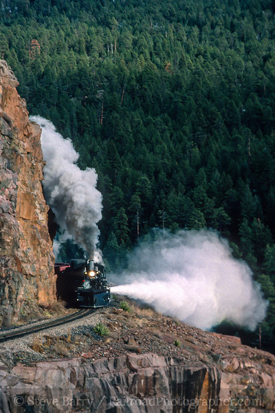 Durango & Silverton Narrow Gauge; Rockwood CO; 12/1998