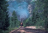 Photo 2907<br /> Durango &amp; Silverton Narrow Gauge; Cascade Wye, Colorado<br /> July 1982