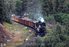 Photo 2906<br /> Durango & Silverton Narrow Gauge; Rockwood, Colorado<br /> July 1982
