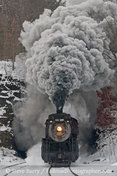 Photo 2005<br /> Canadian National 3254; Nay Aug Tunnel, Scranton, Pennsylvania<br /> January 15, 2011