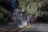 Photo 2580<br /> Tavares, Eustis & Gulf; Tavares, Florida<br /> February 9, 2013
