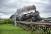 Photo 4438<br /> Tennessee Valley Railroad Museum<br /> Trion, Georgia<br /> June 21, 2017