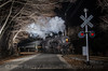 Photo 2938<br /> Valley Railroad; Chesterbrook (Essex), Connecticut<br /> December 27, 2013