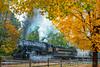 Photo 5374<br /> Western Maryland Scenic<br /> Frostburg, Maryland<br /> October 2000