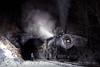 Photo 0789<br /> Western Maryland Scenic; Brush Tunnel, Corriganville, Maryland<br /> November 2000