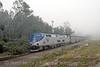 Photo 0105<br /> Amtrak; Beresford, Florida<br /> February 10, 2007