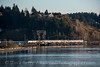 Photo 4616<br /> Amtrak<br /> Bridge 14, Steilacoom, Washington<br /> March 20, 2018