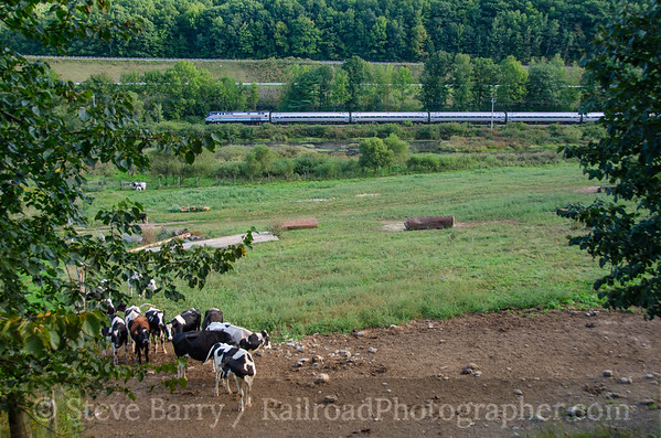 Photo 3926 Amtrak; West Rutland, Vermont September 9, 2016