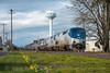 Photo 4608<br /> Amtrak<br /> Junction City, Oregon<br /> March 18, 2018