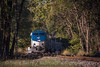 Photo 4374<br /> Amtrak<br /> Springfield, Illinois<br /> October 16, 2017