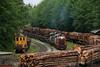 Photo 2088<br /> Englewood Railway; Beaver Cove, British Columbia<br /> June 14, 2011