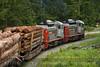 Photo 2085<br /> Englewood Railway; Kinman, Nimpkish, British Columbia<br /> June 13, 2011