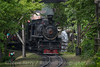 Photo 4243<br /> Dollywood; Pigeon Forge, Tennessee<br /> June 20, 2017