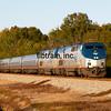 AM2014110004 - Amtrak, Meridian, MS, 11/2014