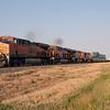 BNSF2012051929 - BNSF, Amarillo, TX, 5/2012