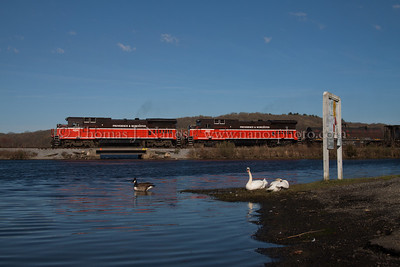 NR-2 passing by Stoddard Cove Geese and swans watch as Providence & Worcester train NR-2 rolls south along Stoddard Cove in Ledyard, CT