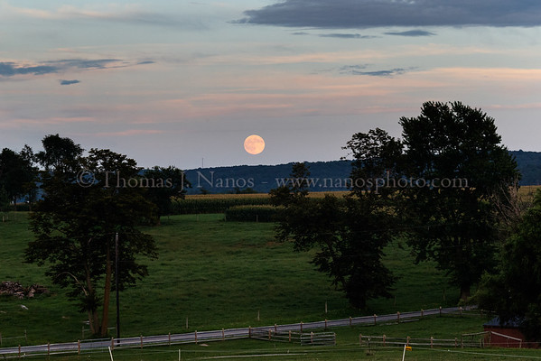 The nearly full moon rises over the farmland
