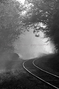Fog over the tracks in Montville, CT