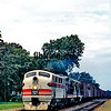 CBQ1960080411 - Burlington Route, Mount Pleasant, IA, 8/1960