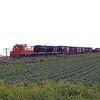 IC1974090001 - Illinois Central, Tuscola, IL, 9/1974