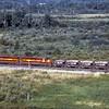 DMIR1995090030 - Duluth, MIssabe & Iron Range, Eveleth, MN, 9-1995