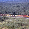 DMIR1995090008 - Duluth, Missabe & Iron Range, Eveleth, MN, 9/1995