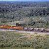 DMIR1995090031 - Duluth, Missabe & Iron Range, Eveleth, MN, 9/1995