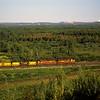 DMIR1995090017 - Duluth, Missabe & Iron Range, Eveleth, MN, 9-1995