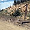 DRG1976070610 - Rio Grande, The Moffat Road, CO, 7/1976