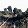 AA1983080001 - Ann Arbor, Milan, MI, 8/1983