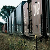 AA1982080108 - Ann Arbor, Bryon, MI, 8/1982