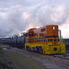 LD1989120016 - Louisiana & Delta, Patoutville, LA, 12/1989