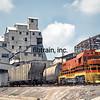 LD1989050132 - Louisiana & Delta, Avery Island, LA, 5/1989