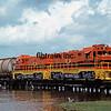 LD1989040045 - Louisiana & Delta, Avery Island, LA, 4/1989