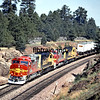 SF1994070186 - Santa Fe, Williams, AZ, 7/1994