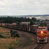 SF1995080081 - Santa Fe, Palmer Lake, CO, 8/1995
