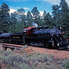 GCR1994070036 - Grand Canyon RR, Grand Canyon, AZ, 7/1994