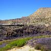VCR1999040029 - Verde Canyon RR, Clarkdale, AZ, 4/1999