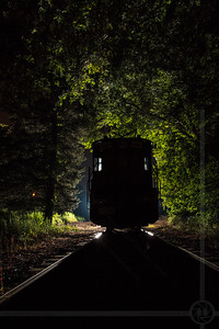 A Locomotive in the Woods