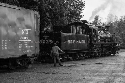 The New Haven Lives