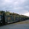 LD1989120007 - Louisiana & Delta, Patoutville, LA, 6/1989