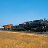 BNSF2001055106 - BNSF, Haslet, TX, 5-2001