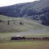 CT1988070070 - Cumbres & Toltec, Los Pinos, CO, 7-1988