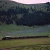 CT1988070069 - Cumbres & Toltec, Los Pinos, CO, 7/1988