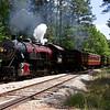 TSR2013040259 - Texas State Railroad, Fairfield Wildlife Sanctuary, TX, 4/2013