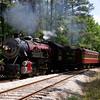 TSR2013040257 - Texas State Railroad, Fairfield Wildlife Sanctuary, TX, 4/2013