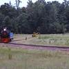 TSR1981080238 - Texas State Railroad, Rusk, TX, 8-1981