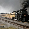 UP1992080924 - Union Pacific, Navasota, TX, 8/1992