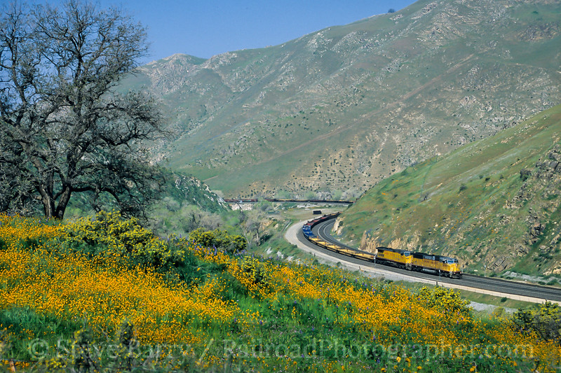 Union Pacific; Caliente CA; 3/2003