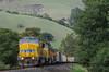 Photo 3108<br /> Union Pacific; Fremont, California<br /> March 9, 2014